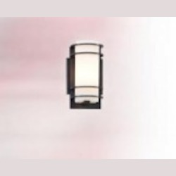 Troy One Light Aluminum Outdoor Wall Light - BF6061BA