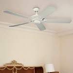 "Cyclone Collection White 60"" Outdoor Energy Star Ceiling Fan 5CY60WH"