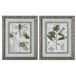Grandiflora Collection Framed Art (Set of 2) 41373