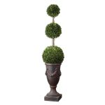 Preserved Boxwood Collection Triple Topiary 60093