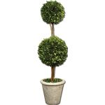 Preserved Boxwood Collection Two Sphere Topiary 60106