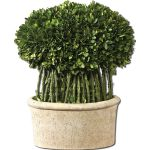 Preserved Boxwood Collection Willow Topiary 60108