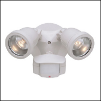 Motion & Security Lights