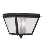 "Amwell Collection 3-Light 10"" Black Outdoor Ceiling Mount with Seeded Glass 2549-04"