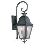 "Amwell Collection 2-Light 9"" Charcoal Outdoor Wall Lantern with Seeded Glass 2551-61"