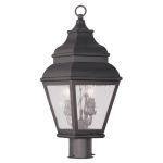 "Exeter Collection 2-Light 8"" Bronze Outdoor Post Head with Clear Water Glass 2603-07"