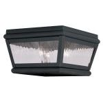 "Exeter Collection 2-Light 8"" Charcoal Outdoor Ceiling Mount with Clear Water Glass 2611-04"