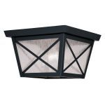 "Montgomery Collection 2-Light 9"" Black Outdoor Ceiling Mount with Seeded Glass 2679-04"
