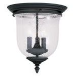 "Legacy Collection 3-Light 12"" Black Ceiling Mount with Hand Blown Clear Seeded Glass 5024-04"