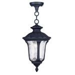 "Oxford Collection 1-Light 14"" Black Outdoor Chain Hang with Clear Water Glass 7849-04"