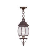 "Frontenac Collection 1-Light 7"" Imperial Bronze Outdoor Chain Hang with Seeded Glass 7906-58"