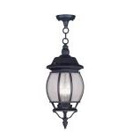 "Frontenac Collection 3-Light 19"" Black Outdoor Chain Hang with Seeded Glass 7908-04"