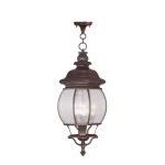"Frontenac Collection 4-Light 10"" Imperial Bronze Outdoor Chain Hang with Seeded Glass 7910-58"