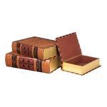 Classic Books (Set Of 3) 51-9527