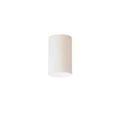 White 1 Light Flush Mount Indoor Ceiling Fixture