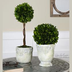 Preserved Boxwood Ball Topiaries S/2 - 150397