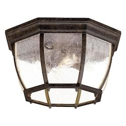 Four Light Black Coral Outdoor Flush Mount - Acclaim Lighting 5603BC/SD