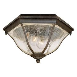 Two Light Black Coral Outdoor Flush Mount