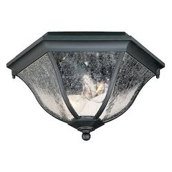 Two Light Matte Black Outdoor Flush Mount - Acclaim Lighting 5615BK
