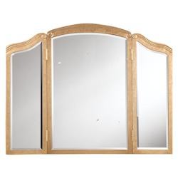 Gold / Clear Mirror 39in. Wide Mirror from the Camille Collection