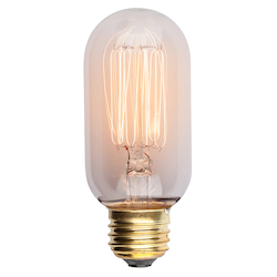 Clear T45 Light Bulb - 380646