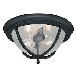 Corsica 13in. Outdoor Ceiling Light - Vaxcel International T0005