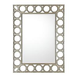 Silver / Gold Mirror Collection 49In. Rectangular Mirror