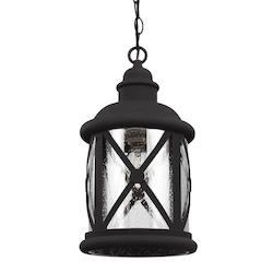 Lakeview One Light Outdoor Pendant in Black with Clear Seeded Glass