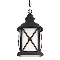 Fluorescent Lakeview One Light Outdoor Pendant in Black with Etched Seeded Glass