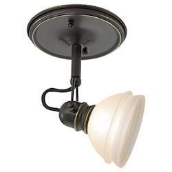 One Light Bronze Directional Flush Mount