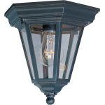 "Westlake Collection 1-Light 9"" Empire Bronze Outdoor Ceiling Light with Clear Glass 1027EB"