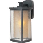 "Bungalow Collection 1-Light 8"" Bronze Outdoor Wall Light with Seedy/Wilshire Glass 3154CDWSBZ"