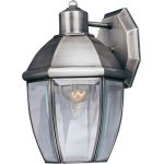 "South Park Collection 1-Light 11"" Brushed Pewter Outdoor Wall Light with Clear Glass 4005CLBP"