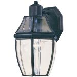 "South Park Collection 1-Light 10"" Black Outdoor Wall Light with Clear Glass 4010CLBK"