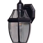 "South Park Collection 1-Light 10"" Burnished Outdoor Wall Light with Clear Glass 4010CLBU"