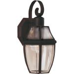 "South Park Collection 1-Light 13"" Burnished Outdoor Wall Light with Clear Glass 4011CLBU"