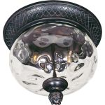 "Carriage House VX Collection 2-Light 12"" Oriental Bronze Outdoor Ceiling Mount with Water Glass 40429WGOB"