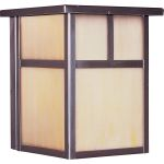 "Coldwater Collection 1-Light 6"" Burnished Outdoor Wall Light with Honey Glass 4050HOBU"