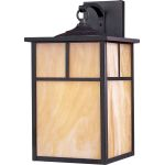 "Coldwater Collection 1-Light 9"" Burnished Outdoor Wall Light with Honey Glass 4054HOBU"