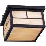 "Coldwater Collection 2-Light 9"" Burnished Outdoor Ceiling Light with Honey Glass 4059HOBU"