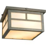 "Coldwater Collection 2-Light 9"" Pewter Outdoor Ceiling Light with Honey Glass 4059HOPE"