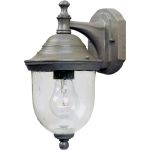 "Outdoor Essentials Collection 1-Light 7"" Pewter Outdoor Wall Light with Seedy Glass 4662CDPE"