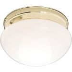 "Essentials Collection 2-Light 9"" Polished Brass Flush Mount with White Glass 5881WTPB"