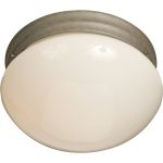"Essentials Collection 2-Light 9"" Pewter Flush Mount with White Glass 5881WTPE"
