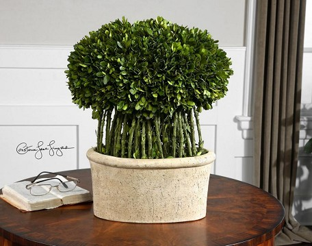 Evergreen Preserved Boxwood Willow Topiary Accessory