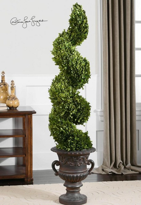 Green / Aged Black Preserved Boxwood Spiral Topiary