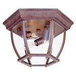 Three Light Burled Walnut Outdoor Flush Mount