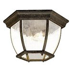 Three Light Black Coral Outdoor Flush Mount - Acclaim Lighting 5602BC/SD