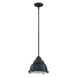 1 Light Mini Pendant with Metal Shade & Diffuser - 371968