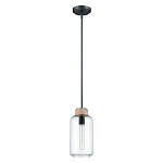 1 Light Mini Pendant with Rope Accent and Clear Glass - 372048